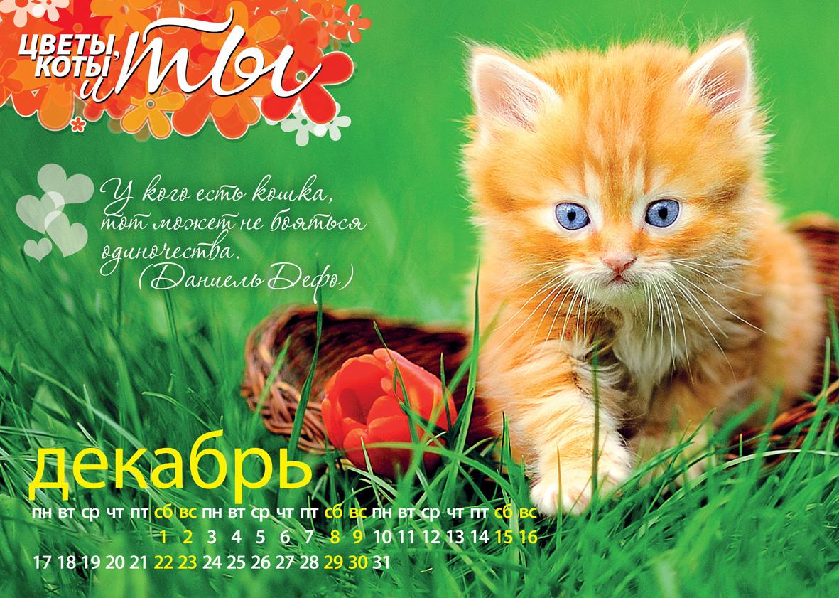 "Календарь из журнала ""Цветы, коты и ты"""