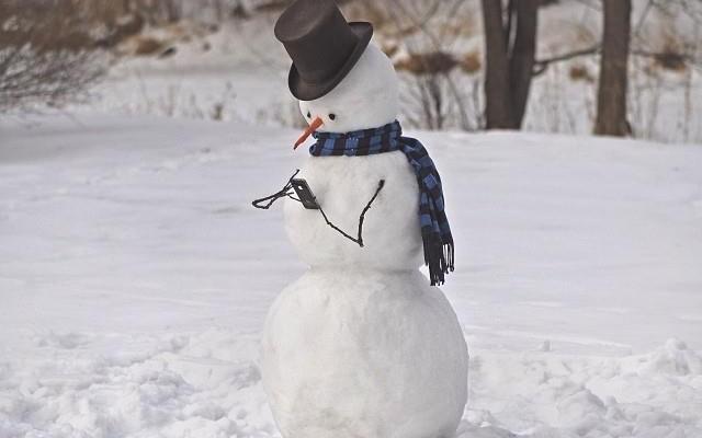 Снегов моб