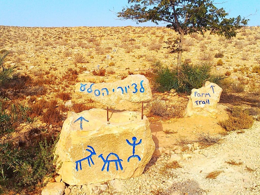 Израильская экологическая ферма в пустыне Негев
