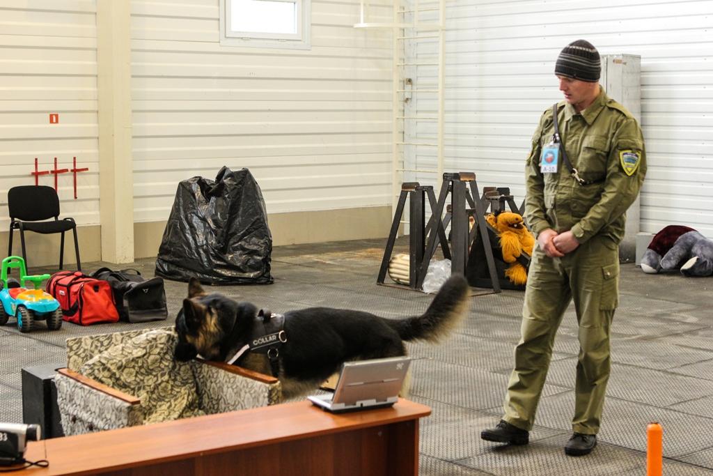 Кинолог Анатаолий Жилевский и собака Мак Бруно. Фото из сети, но именно с этой собакой мы познакомились лично :)